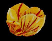 Acrylbild Tulpe, gelb/rot von Anke Franikowski