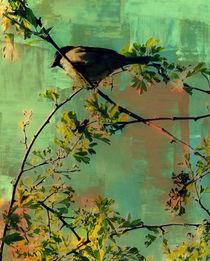 Resting Bird. von rosanna zavanaiu