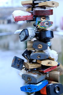 Love Locks von Bianca Baker