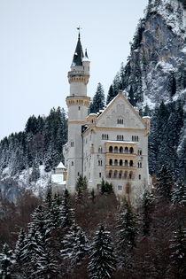 Schloss Neuschwanstein von Bianca Baker