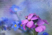 Lila & Blau  von Ursula Pechloff