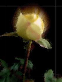 Yellow rose. by Bernd Vagt