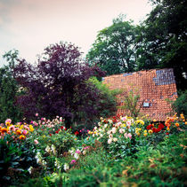 cottage garden by helmut krauß