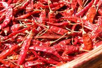 Dried red Chillies, Sri Lanka von reorom