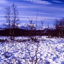 leicht verschneit ist auch fast winter by helmut krauß