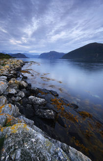 Norway - fjords at dusk von Horia Bogdan