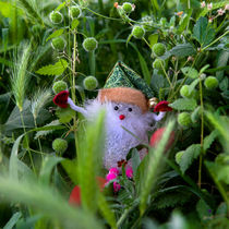 The Gnome in the Grass by Larisa Kroshkin