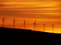 Windmills von Mary Lane