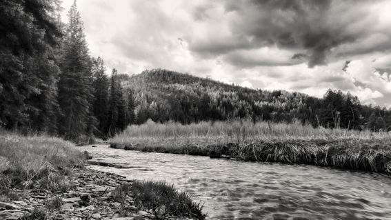 Creek-landscape