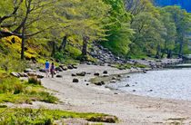 Loch Lubnaig, Stirlingshire by Buster Brown Photography