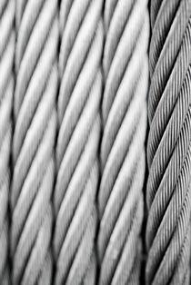 Steel wire von Lars Hallstrom