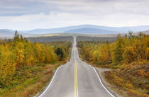 Finland - straight road through Lapland in autumn by Horia Bogdan