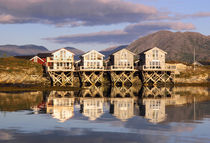 Norway - local houses on the fjords reflected in the calm waters by Horia Bogdan