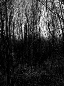 Dark by S A