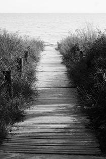 Usedom-walkway