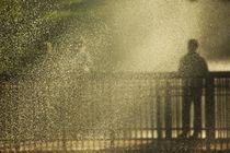 Gold rain von photogatar