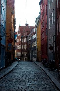 Copenhagen street by Alberto Vaccari