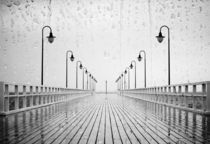 Wet morning by photogatar