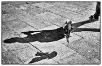 Landende Taube am Markusplatz by Matthias Töpfer