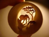 Roll Africa (Afrique) von Anastassia Elias