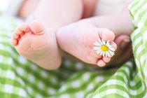 Baby Feet by Tobias Pfau