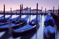 Moored Gondolas in Venice