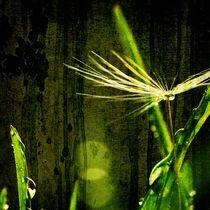 Green  von Julia Delgado