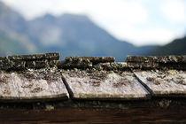 Roof tops von Bianca Baker
