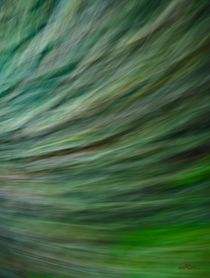 Waldspaziergang no. 14 von arteralfo