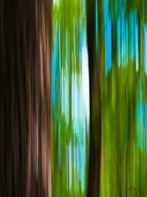 Waldspaziergang no. 15 von arteralfo