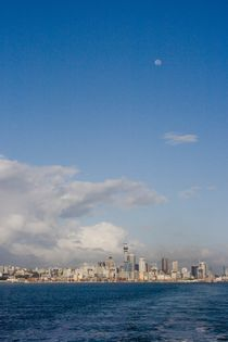 Ocean View of Auckland by Stas Kulesh