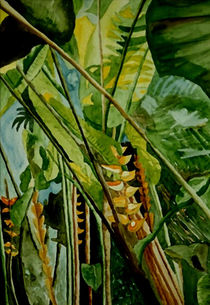 Heliconia 2 by Marie Luise Strohmenger