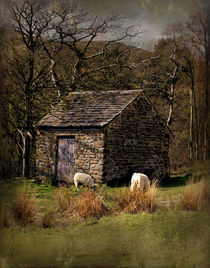 Edale, Derbyshire by martinhenry