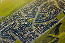 Suburban Streets of South Auckland by Stas Kulesh