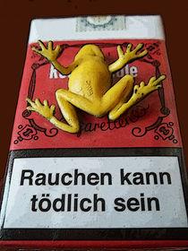 Rauchen kann... by techdog