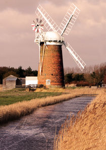 Horsey mill portrait by Mark Bunning
