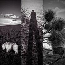 Schwarz weißer Triptychon von Arno Linke-Rohn
