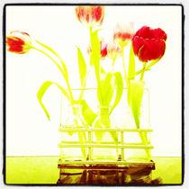 Blumen gelb rot von Arno Linke-Rohn