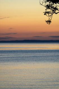 Evening falls von Lars Hallstrom