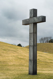 The Cross von Lars Hallstrom