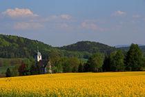 Frühlingslandschaft von Wolfgang Dufner