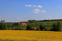 Dreiseitenhof in Frühlingslandschaft von Wolfgang Dufner