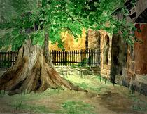 Mein Freund der Baum von Marie Luise Strohmenger