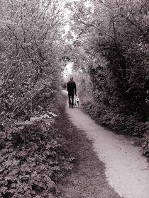 Woody Walkway by Sarah Clark