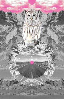 Snowy Owl Fortune Teller by Dragana Nikolic