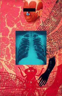 X-Ray von Dragana Nikolic