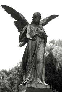 Engel-mit-rose-sophienfriedhof-berlin-mitte