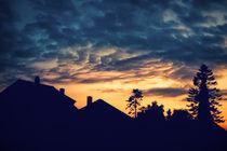 Silhouette 043 von Bjoern Carstens