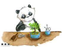 Panda Bonzaï by sarah-emmanuelle-burg