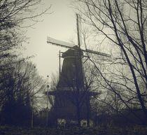 Windmill-westerpark-amsterdam